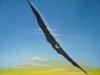 Sommerriss 40x40 ÖlLw Dezember 2005