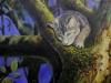 Carlo im Apfelbaum Öl/Lw 50cm x 40cm